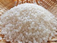 米について